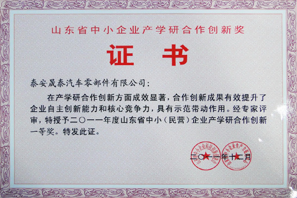 First Prize of Industry, University and Research Cooperation Innovation of Small and Medium-sized Enterprises in Shandong Province