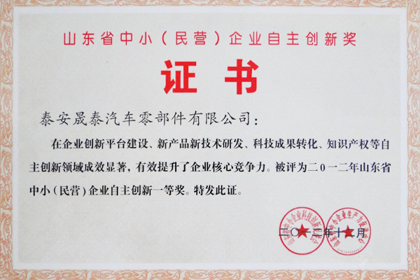 Shandong Province Independent Innovation First Prize